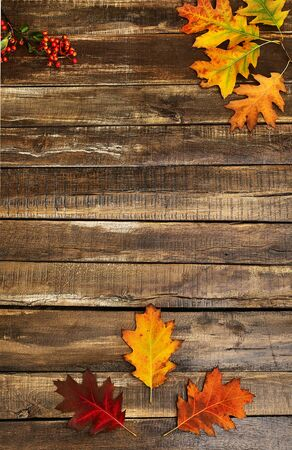 Autumn maple leaves on top view wooden table. Vertical frame with corner