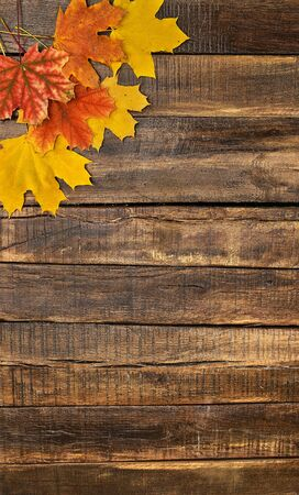 Autumn maple leaves on top view wooden table. Vertical frame with upper left corner.