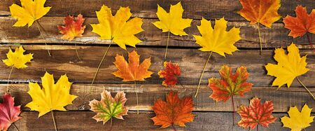 Autumn maple leaves background on top view wooden table horizontal frame.