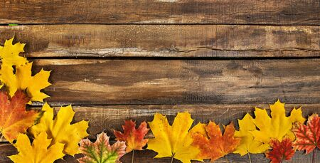 Autumn maple leaves on top view wooden boards. Horizontal frame with leafage on bottom 版權商用圖片