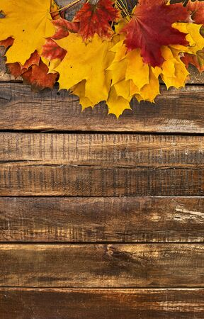 Autumn maple leaves on top view wooden table. Vertical frame with top side foliage and copy space. 版權商用圖片
