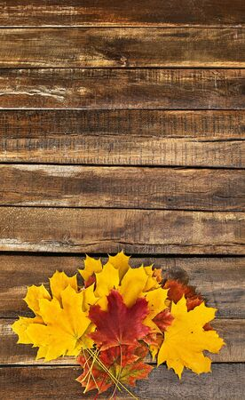 Autumn maple leaves bouquet on wooden table vertical frame with copy space.