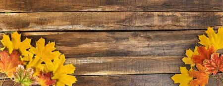 Autumn maple leaves on top view wooden table. Horizontal frame with two bottom corner.