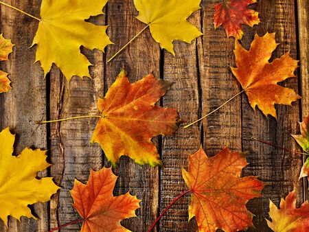Autumn maple leaves background on on vertically arranged boards. Top view wooden table square frame.