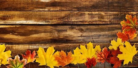 Autumn maple leaves on top view wooden boards. Horizontal long frame with corner color leafage on bottom Standard-Bild