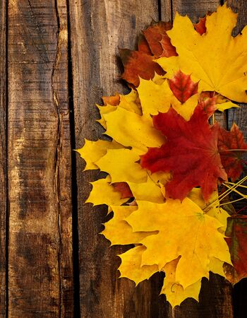 Autumn maple leaves on top view wooden table. Vertical frame with top side foliage and copy space. Standard-Bild
