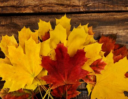 Autumn maple leaves on top view wooden old table. Horizontal frame with up copy space. Standard-Bild