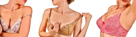 Group women wearing lace underwear. Horizontal long frame banner isolated.