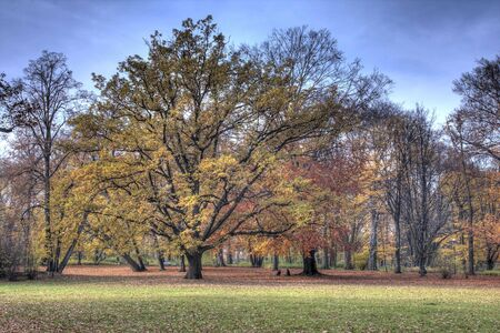 Autumn park Stock Photo - 3824132