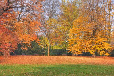 Autumn park Stock Photo - 3824137