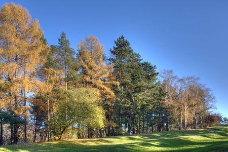 Colours of autumnin the park. Stock Photo - 3853870