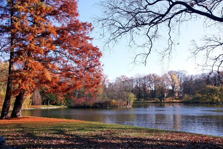 Colours of autumnin the park. Stock Photo - 3873358