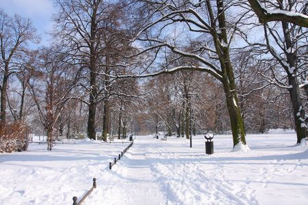 Winter In The Park. Winter in the Municipal South Park in Wroclaw 2009 photo