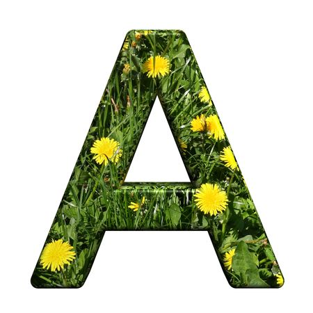 One letter from floral alphabet set, isolated on white. Computer generated 3D photo rendering. photo