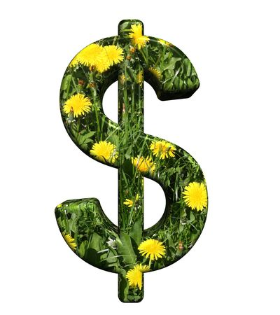 Dollar sign from floral alphabet set, isolated on white. Computer generated 3D photo rendering. photo