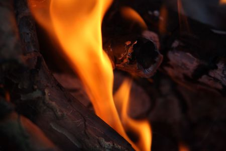 Fire and flames in campfire - closeup. photo