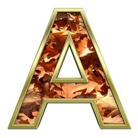 One letter from autumn gold alphabet set, isolated on white. Computer generated 3D photo rendering. Stock Photo - 5606114