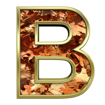 One letter from autumn gold alphabet set, isolated on white. Computer generated 3D photo rendering.  Stock Photo - 5606121