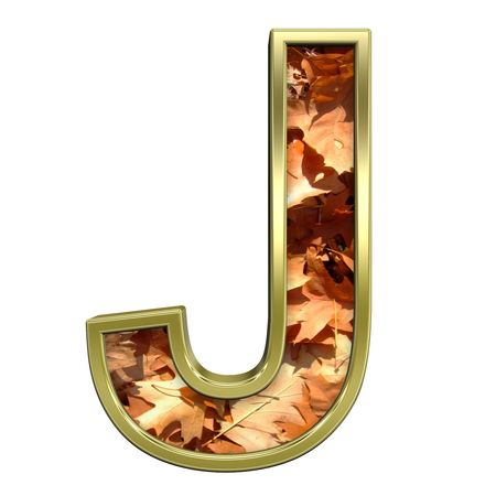 One letter from autumn gold alphabet set, isolated on white. Computer generated 3D photo rendering.  photo