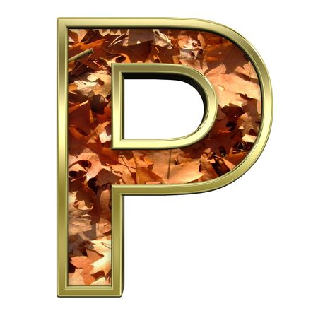 One letter from autumn gold alphabet set, isolated on white. Computer generated 3D photo rendering. Stock Photo - 5606107