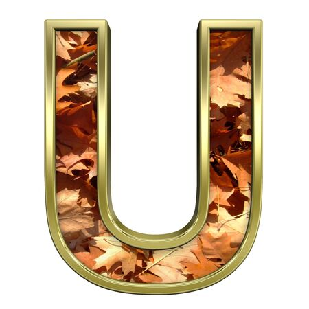 One letter from autumn gold alphabet set, isolated on white. Computer generated 3D photo rendering. Stock Photo - 5606110