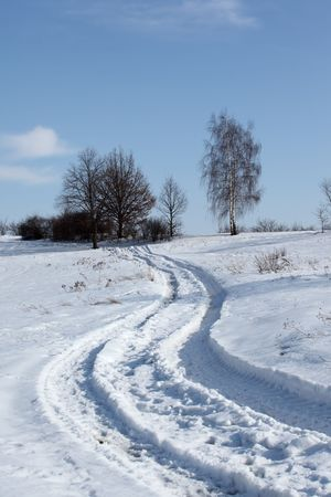 winter road: Winter landscape with path