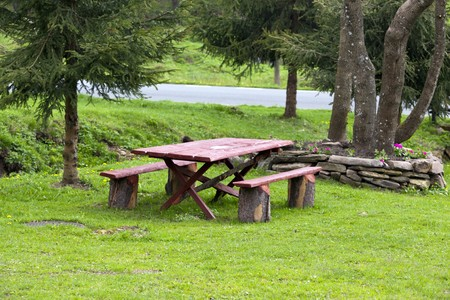Picnic table on the grass in spring.