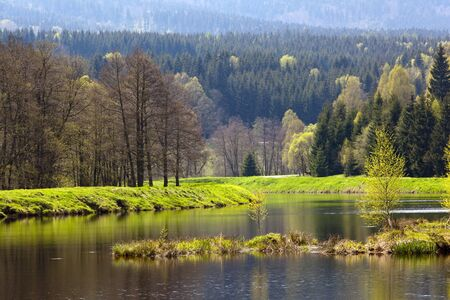 Reflection of green spring mountain on the lake. South Poland photo