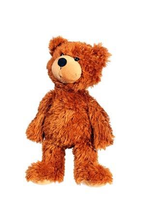 Permanent teddybeer geïsoleerd over wit met het knippen van weg Stockfoto