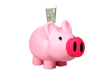 Piggy bank with Dollar bill isolated over white photo