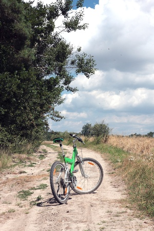 A road on the edge of the forest in summer s day with bike Stock Photo - 13449248