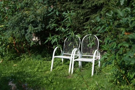 Two empty chairs in the green garden Stock Photo - 21948529