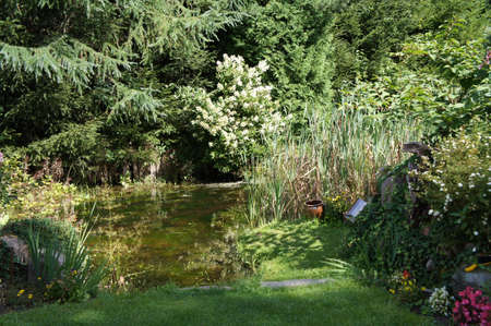 Green summer garden with a pond Stock Photo - 21948539