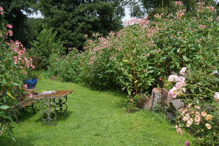 Green summer garden Stock Photo - 21948540