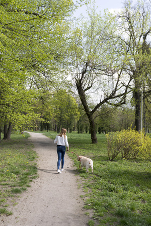 Walking girl with a dog in the spring park  photo