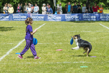 Lovers of dogs met at competitions  Dog Chow Disc Cup 2014 ,where they could be there to show off their skills and their dogs in Wroclaw, Poland on Juni 1, 2014