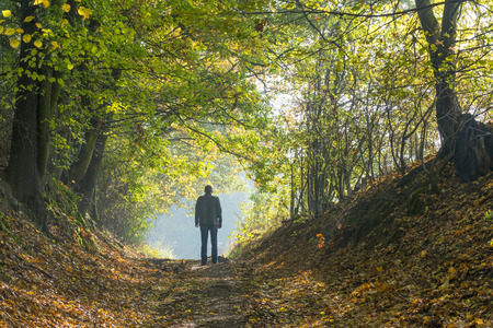 fading: A man walking along a forest path in autumn