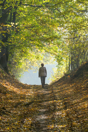 A woman walks through the forest in autumn. photo