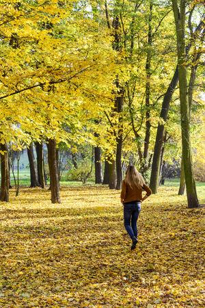 Autumnal walk in park photo