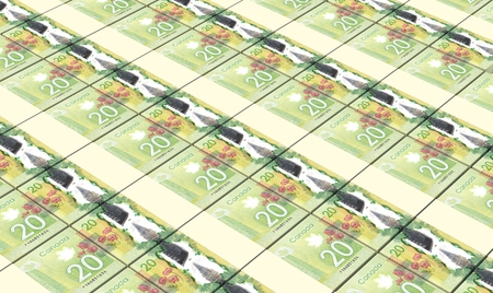 canadian dollar: Canadian dollar bills stacked background.