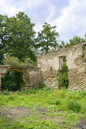 fourteenth: The ruins of an ancient castle from the fourteenth century in Pankow. Lower Silesia, Poland