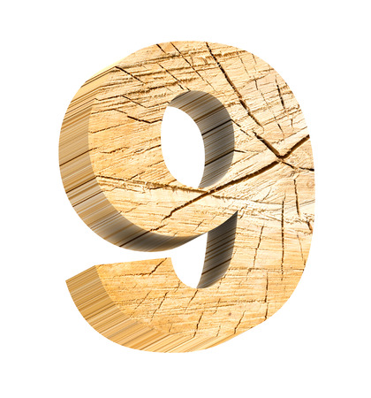 fallen tree: Number from wooden alphabet set isolated over white. Computer generated 3D photo rendering. Stock Photo