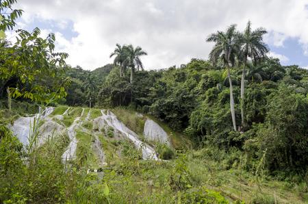 holguin: Waterfalls in the park El Nicho, Cienfuegos Province, Cuba