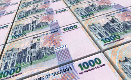 packaged: Tanzanian shilling bills stacks background. 3D illustration. Stock Photo