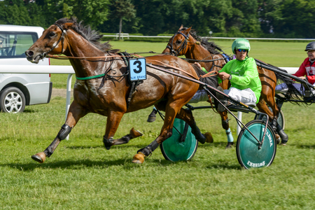 Finish the race for the 8-year-old and older trotting French on June 18, 2017 in Wroclaw, Poland. This is an annual race on the Partynice track open to the public.