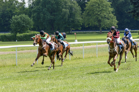 3 year old: Finish the race for the 3-year-old Arabian horses group III on June 18, 2017 in Wroclaw, Poland. This is an annual race on the track Partynice open to the public. Editorial