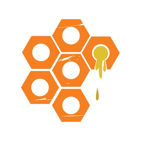 apiculture: honey bee