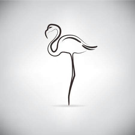 flamingó, skicc vonal