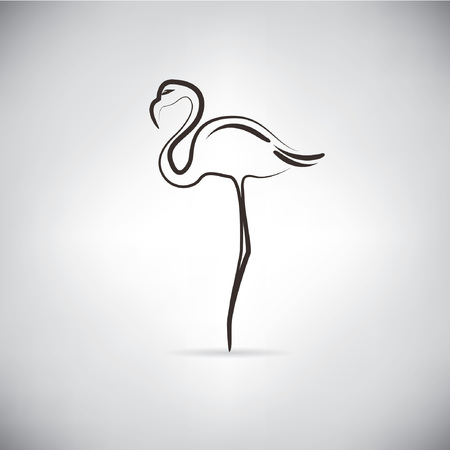 crane bird: flamingo, sketch line