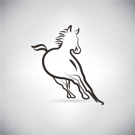 equine: horse, sketched concept